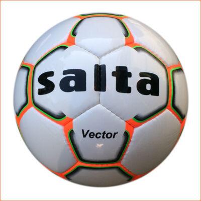 SALTA Vector