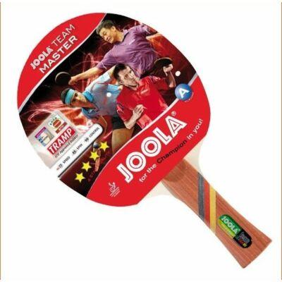 Pingpong ütő Joola Team Master